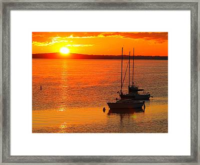 Framed Print featuring the photograph The View by John Hartman