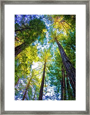 The View Framed Print by Patricia Stalter