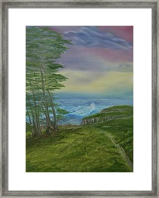 The View Framed Print by Robin Lee
