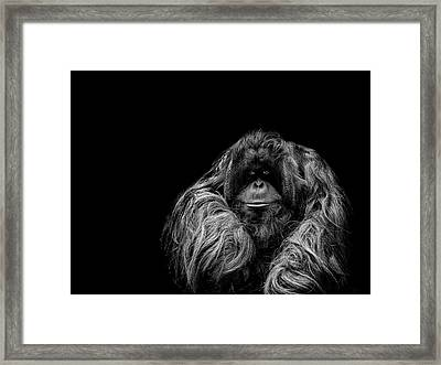 The Vigilante Framed Print