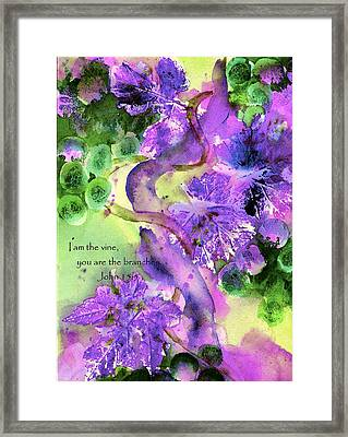 The Vine Framed Print