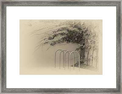 The Vines Framed Print