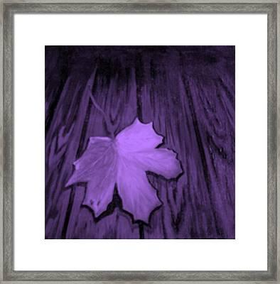 The Violet Leaf Framed Print by Ninna