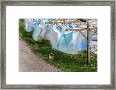 The Vision Of Fog Framed Print by Scott Thorp