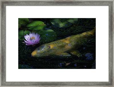 Framed Print featuring the photograph The Visitor by David Coblitz