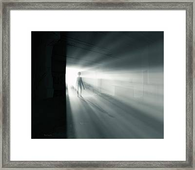 The Visitor Framed Print by Wim Lanclus