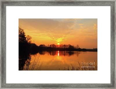 The Waal Framed Print by Nichola Denny