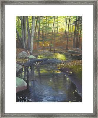 The Wading Pool Framed Print by Laurel Ellis