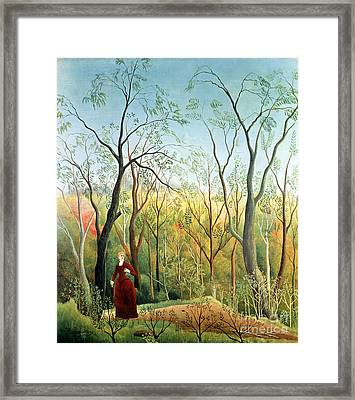 The Walk In The Forest Framed Print