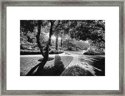 The Walkway Bw Framed Print by Lawrence Christopher