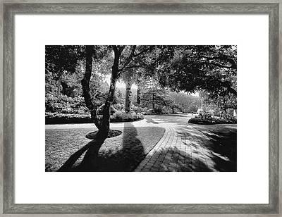 The Walkway Bw Framed Print
