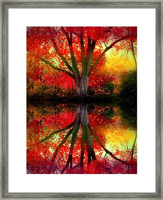 The Warm Dreams Of Autumn Framed Print by Tara Turner