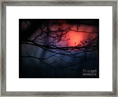 The Warm Light Framed Print by Angel Ciesniarska