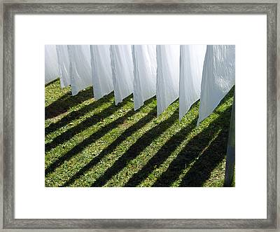 The Washing Is On The Line - Shadow Play Framed Print
