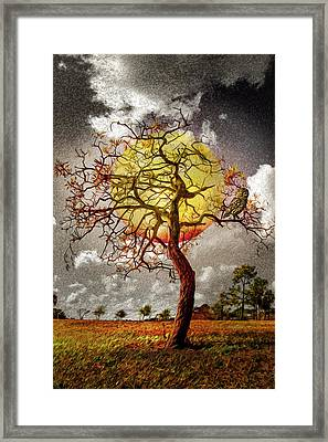 The Watch At Nightfall Framed Print by Debra and Dave Vanderlaan