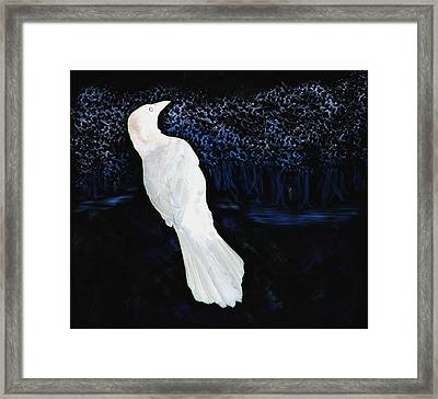 The Watcher In The Forest Framed Print