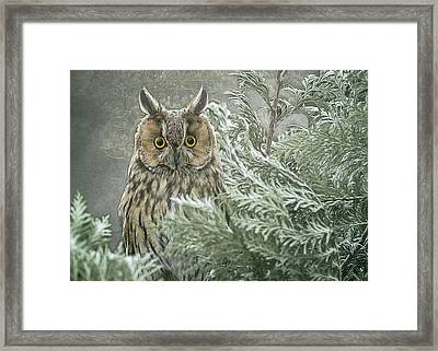 The Watcher In The Mist Framed Print