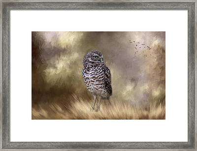Framed Print featuring the photograph The Watchful Eye by Kim Hojnacki