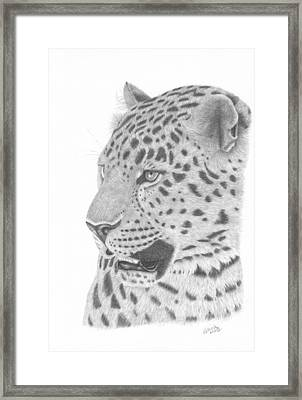 The Watchful Leopard Framed Print