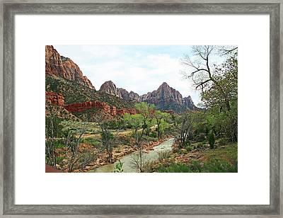 The Watchman Framed Print
