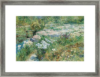 The Water Garden Framed Print by Childe Hassam