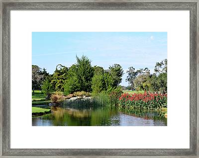 Framed Print featuring the photograph The Water On Number One Santa Maria Country Club by Barbara Snyder