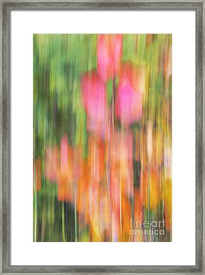 The Watercolor Garden Framed Print by Aimelle