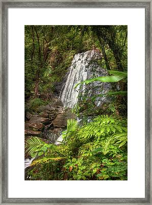 The Waterfall Framed Print by Hanny Heim