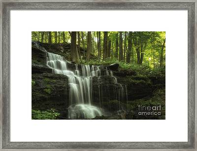 The Waterfall In The Forest Framed Print
