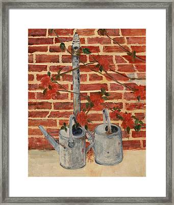 The Watering Cans Framed Print by Betty Stevens