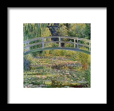 Water Garden Framed Prints