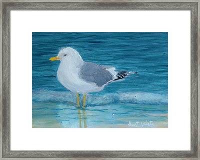 The Water's Cold Framed Print