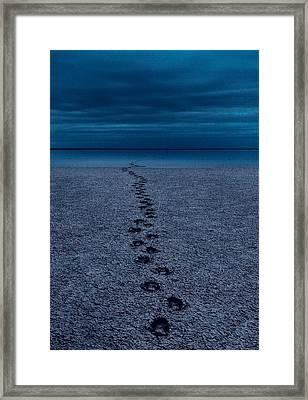 Framed Print featuring the photograph The Way Back by Julian Cook