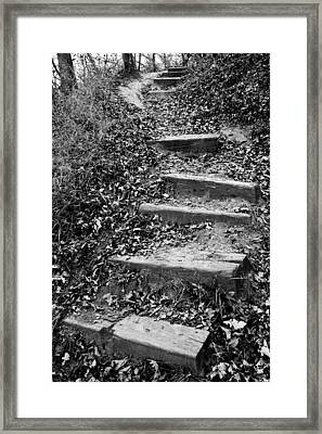 The Way Forward Framed Print by Donald  Erickson