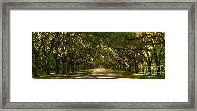The Way Home Wormsloe Plantation Savannah Georgia Art Framed Print by Reid Callaway