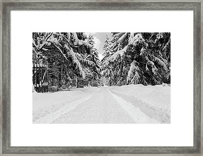 The Way Into The Winter - Monochrome Version Framed Print by Andreas Levi