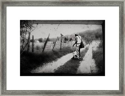 Framed Print featuring the photograph The Way Of The Crow by Gray  Artus