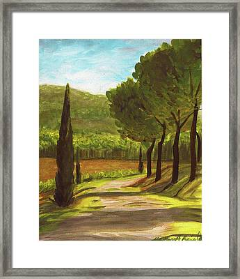 The Way Of The Olive Branch Framed Print