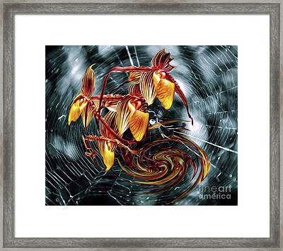 The Web Of Life Framed Print