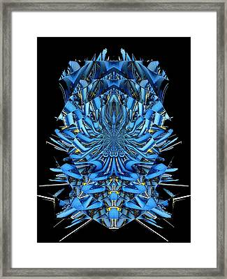 The Web We Weave 2 Framed Print by Tim Allen