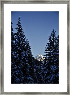 The Wedge Through The Trees Framed Print by Pelo Blanco Photo