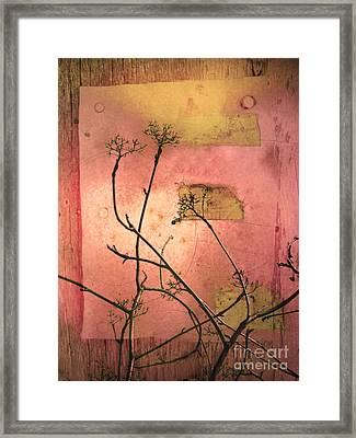 The Weeds Framed Print by Tara Turner