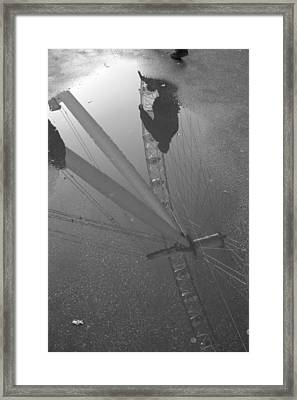The Wheel Of Life Framed Print
