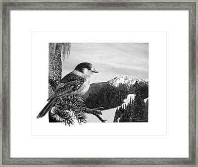 The Whiskeyjack Framed Print by Logan Parsons