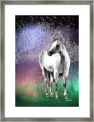 The White Horse Framed Print by Arline Wagner