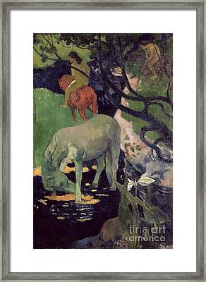 The White Horse Framed Print by Paul Gauguin