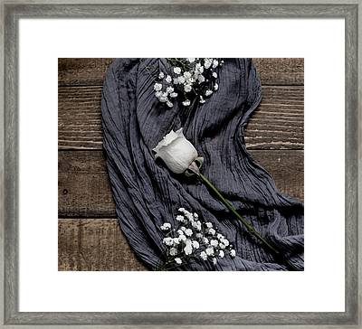 Framed Print featuring the photograph The White Rose by Kim Hojnacki