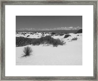 The White Sands, Nm Framed Print by Lori Thompson
