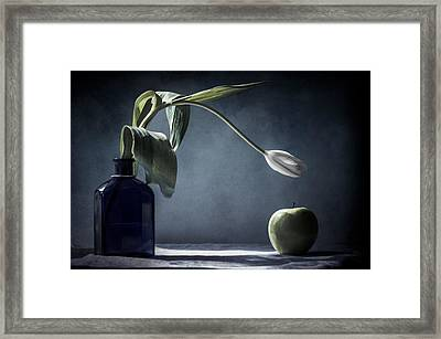The White Tulip And The Green Apple  Framed Print