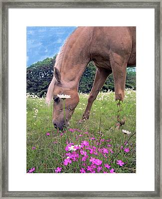 The Wild Flowers And Company Framed Print